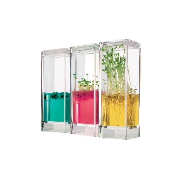 ecosistema-plantarium-garden-lab